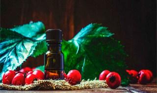 Los 10 mejores aceites Rosa Mosqueta reviews